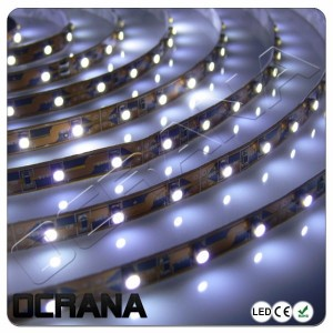 Taśma LED 12V BLUE POINT 300 x LED SMD3528